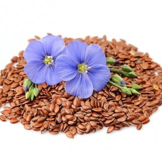 BewareFlaxseed: a small but powerful ingredient