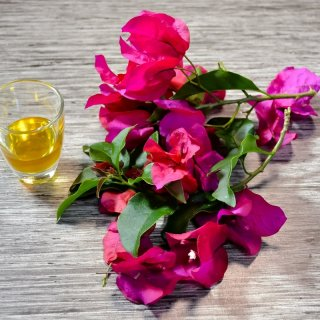 remove cough with bougainvilleaHow to make a natural remedy for cough with bougainvillea